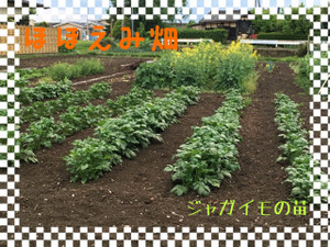 H30425_1