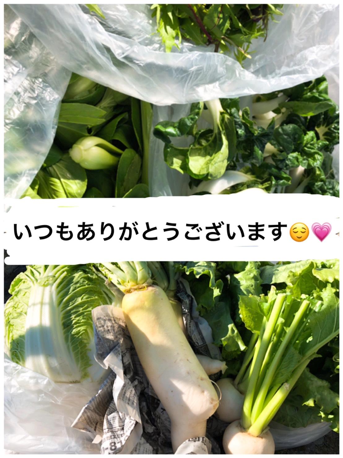 *11/16(金)ほほえみこども食堂*